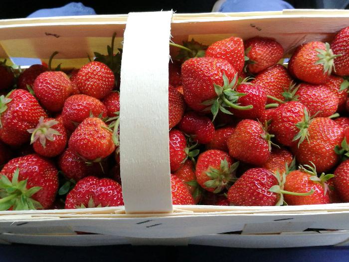 Erdbeeren Sauerland
