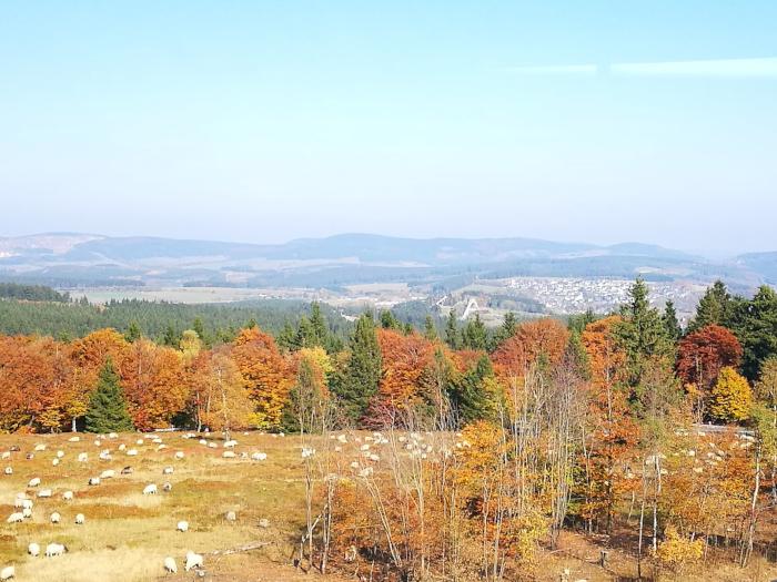 Blog Sauerland Kahler Asten Herbst