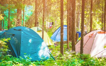 Öko-Camping bunte Zelte Wald