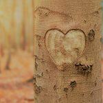 Fass-dir-ein-Herz_AdobeStock_290086543_bearbeitet_klein